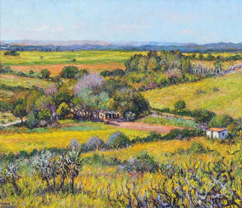 """Chacras de Tulumba"" . óleo sobre lienzo . 60 x 70 cm . 2013"