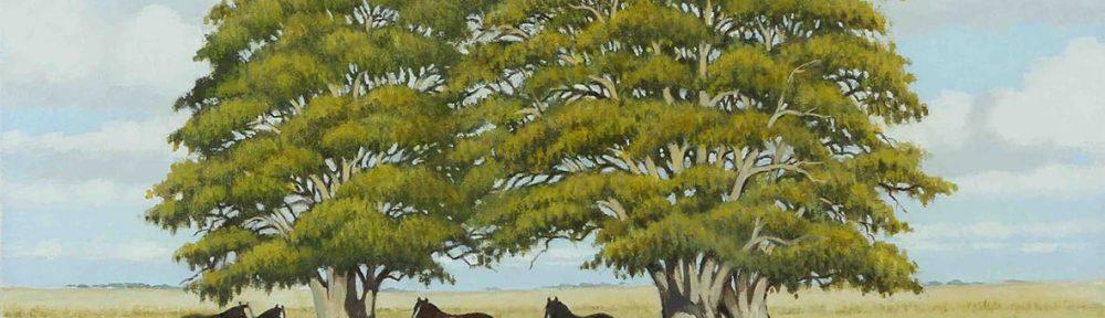 Los dos ombúes. Óleo sobre lienzo. 50x60cm. 2012