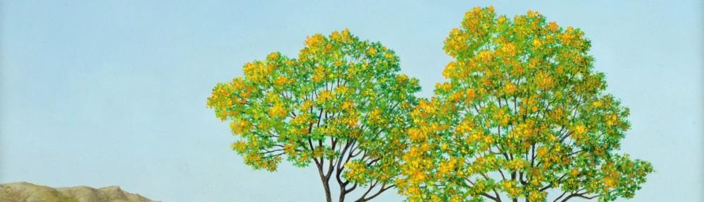 Primavera . óleo sobre papel . 30x40cm . 2013