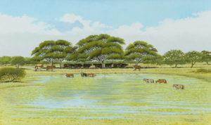 El Tajamar . óleo sobre lienzo . 60x100cm . 2014