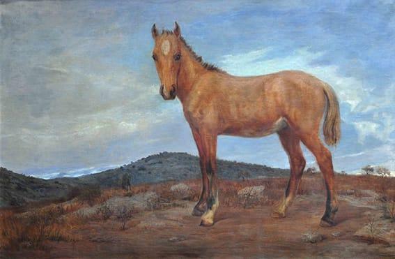 Luis Cordiviola . Potrillo Gateado . óleo sobre lienzo . 132x195cm . 1923