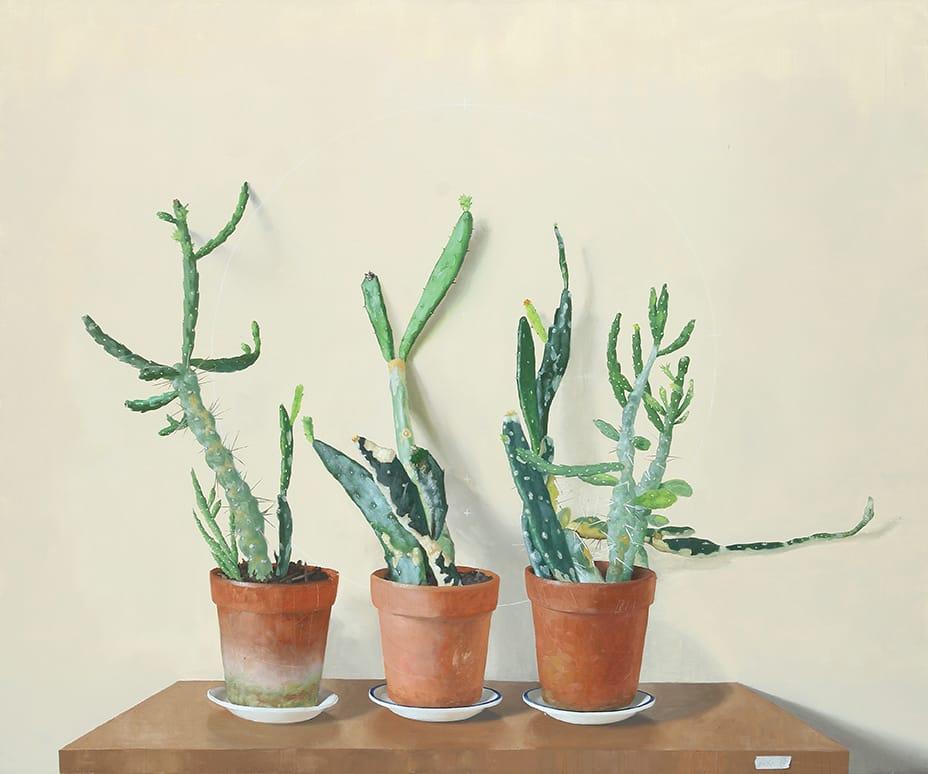 Cactus óleo sobre lienzo 100x120cm 2015