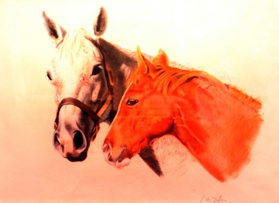 "Adriana Zaefferer ""Cabezas Talking Head"", pastel sobre papel, 35x41 cm, 1986"