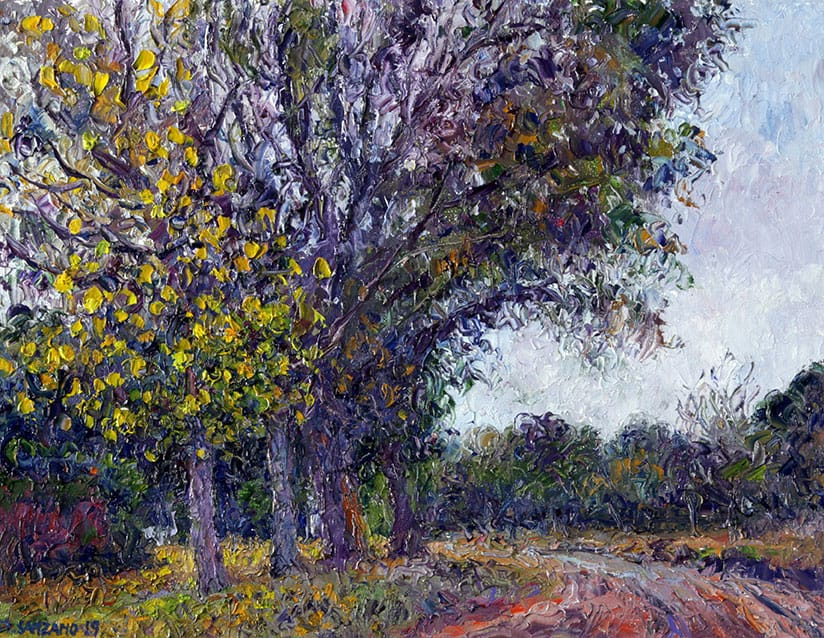 Caminito de Otoño . óleo sobre lienzo . 27 x 35 cm . 2019