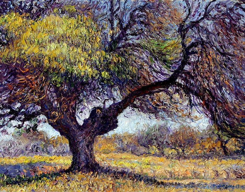Algarrobo de los Manzur . óleo sobre lienzo . 35 x 45 cm . 2019
