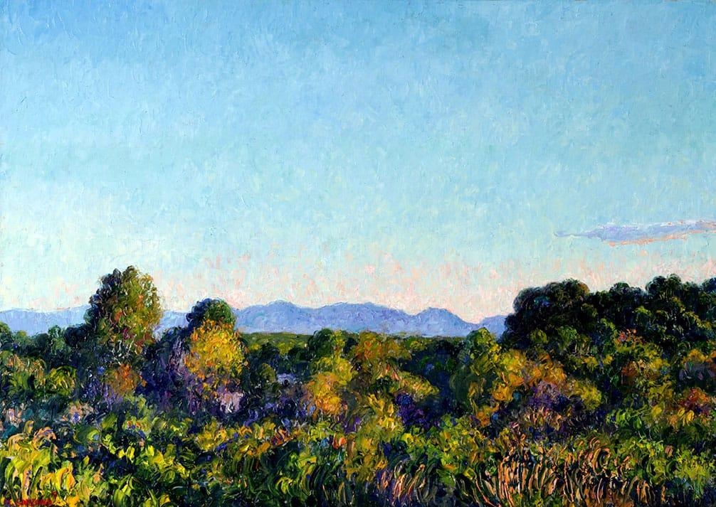 Quietud . óleo sobre lienzo . 50 x 60 cm . 2019