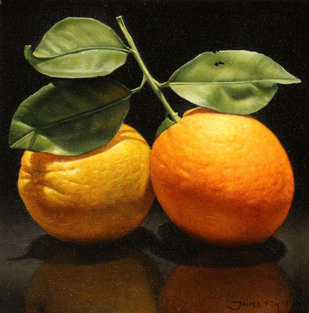 Naranja con Rama . óleo sobre lienzo . 20 x 20 cm . 2019