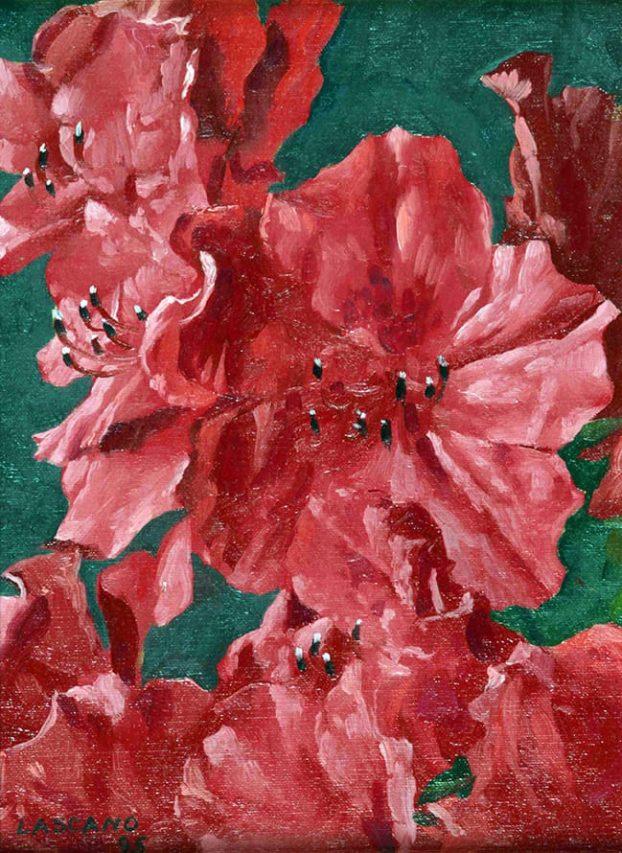 Juan Lascano . Azaleas . óleo sobre lienzo . 24 x 18 cm . 1995