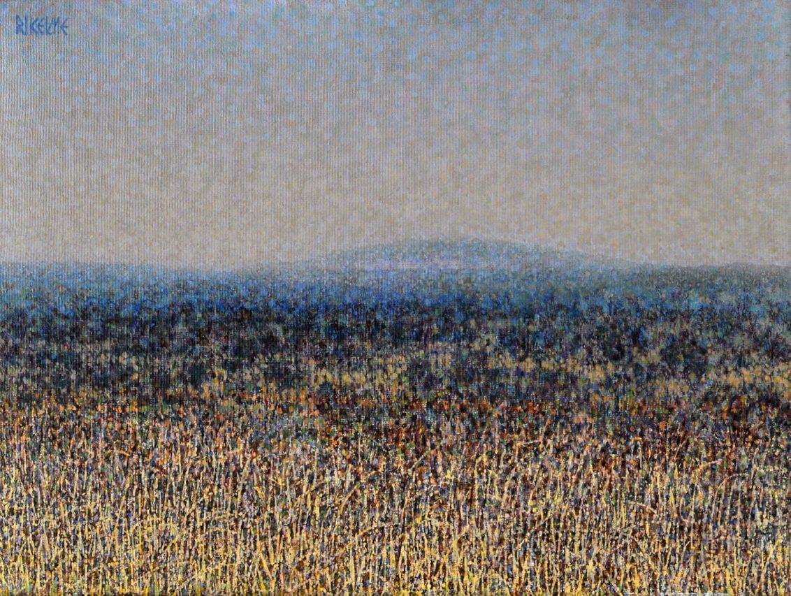 Paisaje Rionegrino . acrílico sobre lienzo . 30 x 40 cm . 1989